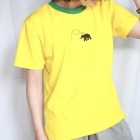 ドライメッシュ(Yellow/Green)